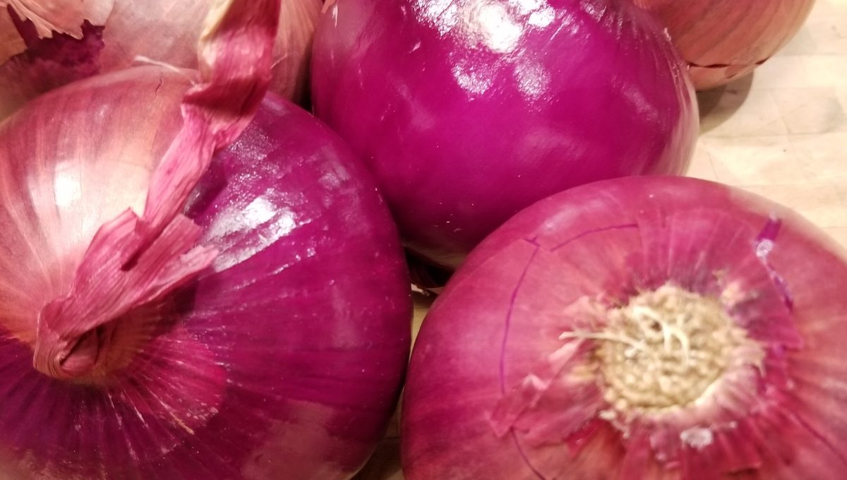 Rossa Di Milano Heirloom Onion